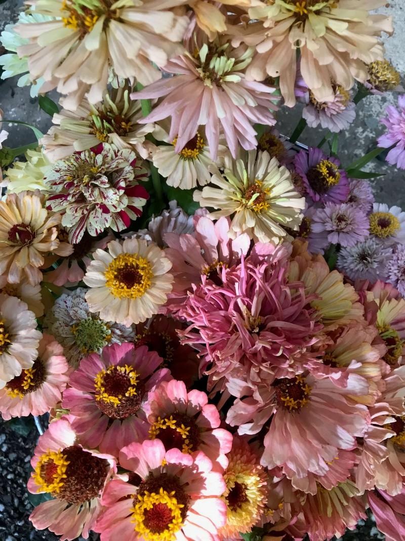 flowers-by-wetherly-wedding-solynka-and-ludwig-1