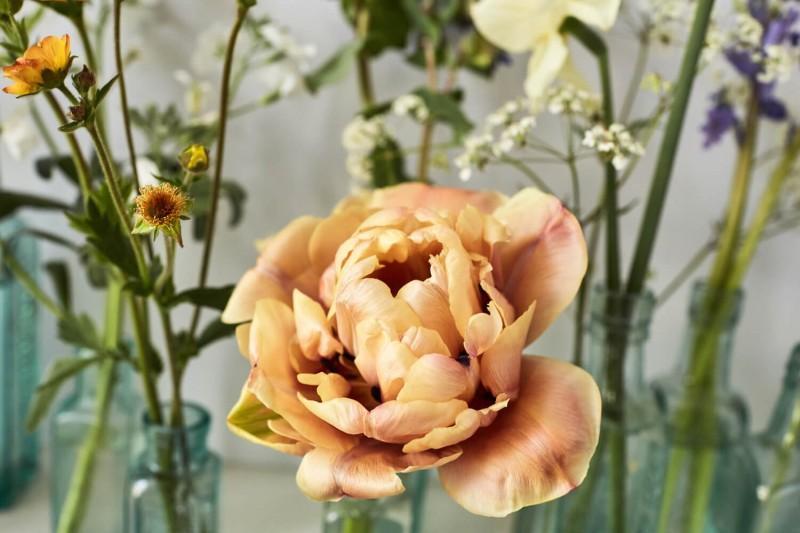 flowers-by-wetherly-april-1-british-grown-seasonal-4