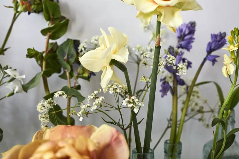 flowers-by-wetherly-april-1-british-grown-seasonal-7