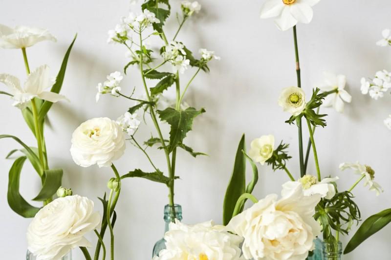 flowers-by-wetherly-april-3-british-grown-seasonal-2