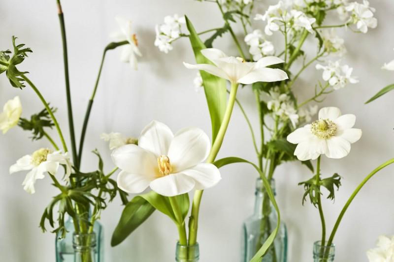 flowers-by-wetherly-april-3-british-grown-seasonal-3