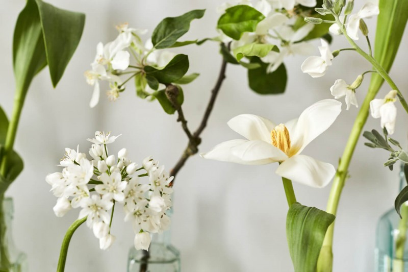 flowers-by-wetherly-april-3-british-grown-seasonal-6