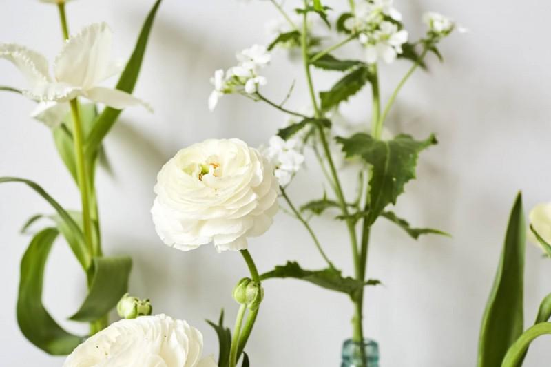 flowers-by-wetherly-april-3-british-grown-seasonal-7