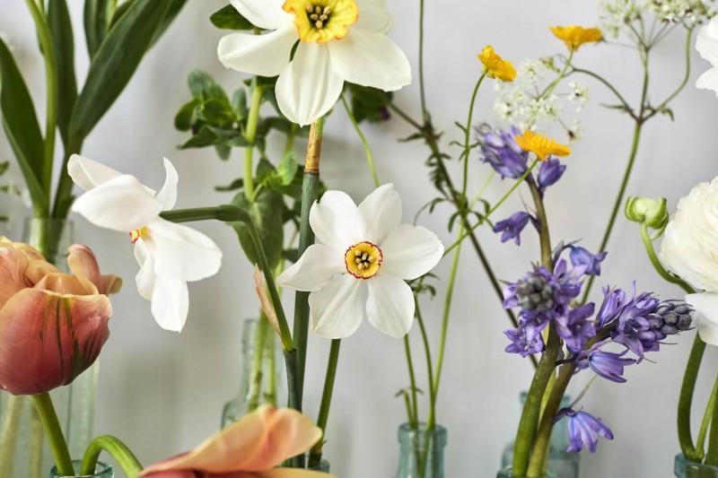 flowers-by-wetherly-april-1-british-grown-seasonal-3