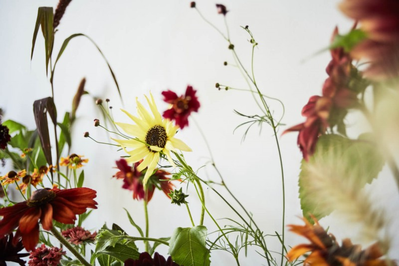 flowers-by-wetherly-wedding-british-locally-grown-august-4-4