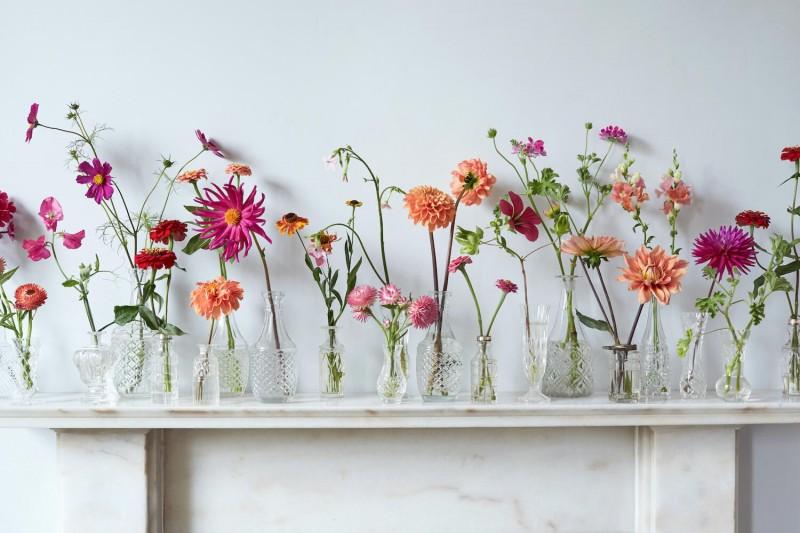 wetherly-july-british-grown-flowers-seasonal