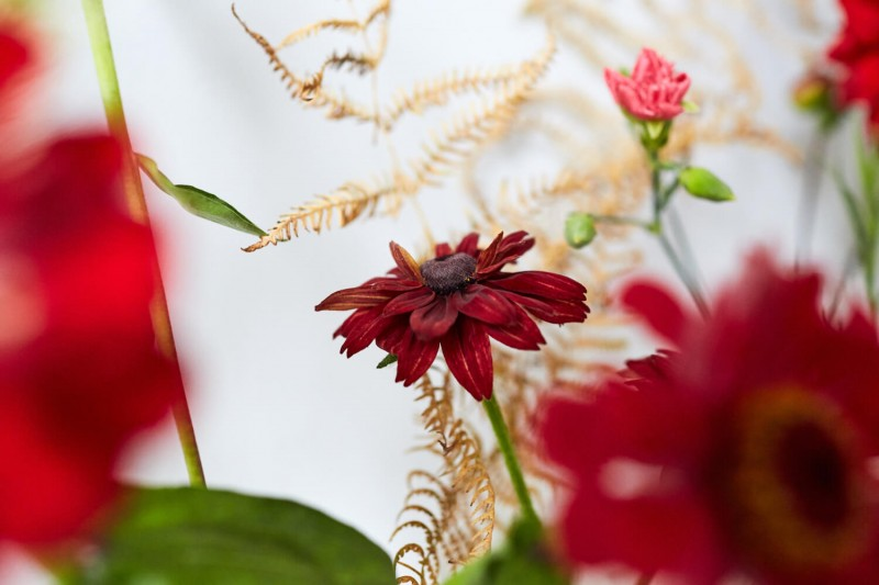 flowers-by-wetherly-wedding-british-locally-grown-october-1-5
