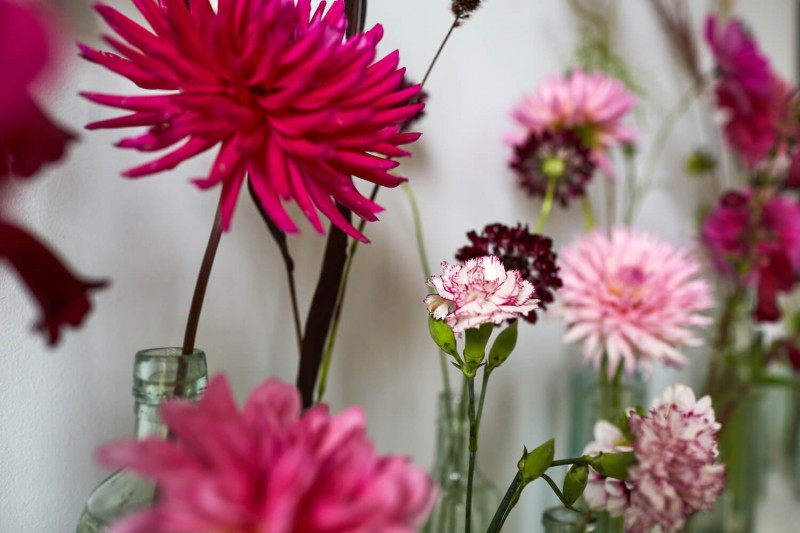flowers-by-wetherly-wedding-british-locally-grown-september-2-4