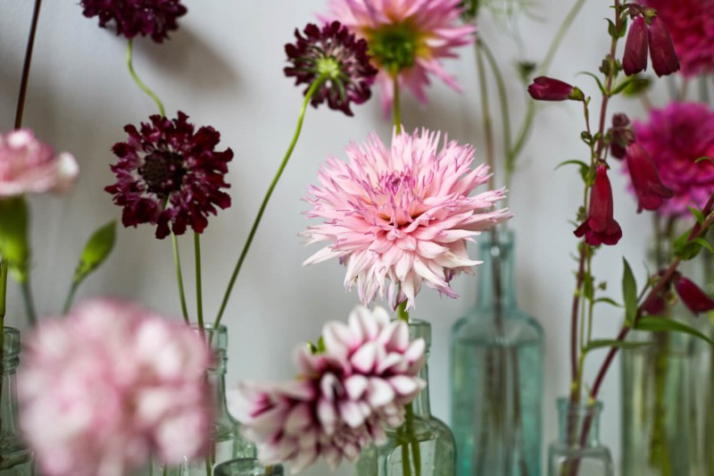 flowers-by-wetherly-wedding-british-locally-grown-september-2-5