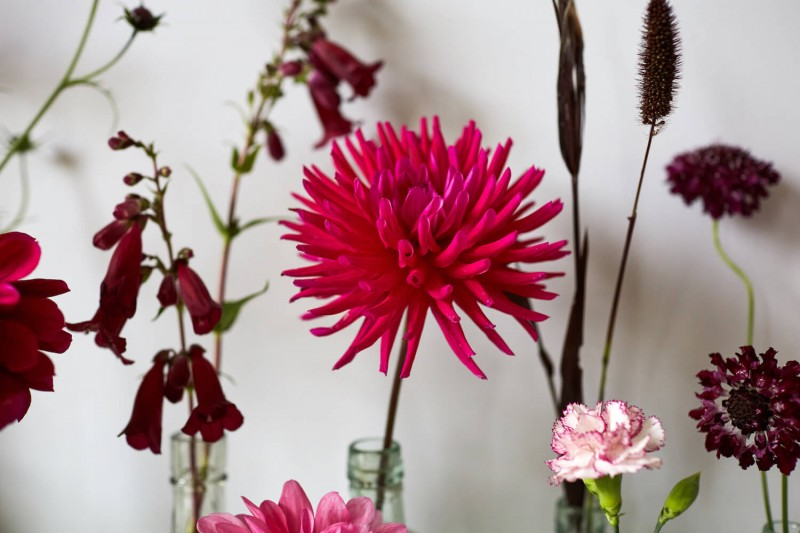 flowers-by-wetherly-wedding-british-locally-grown-september-2-8