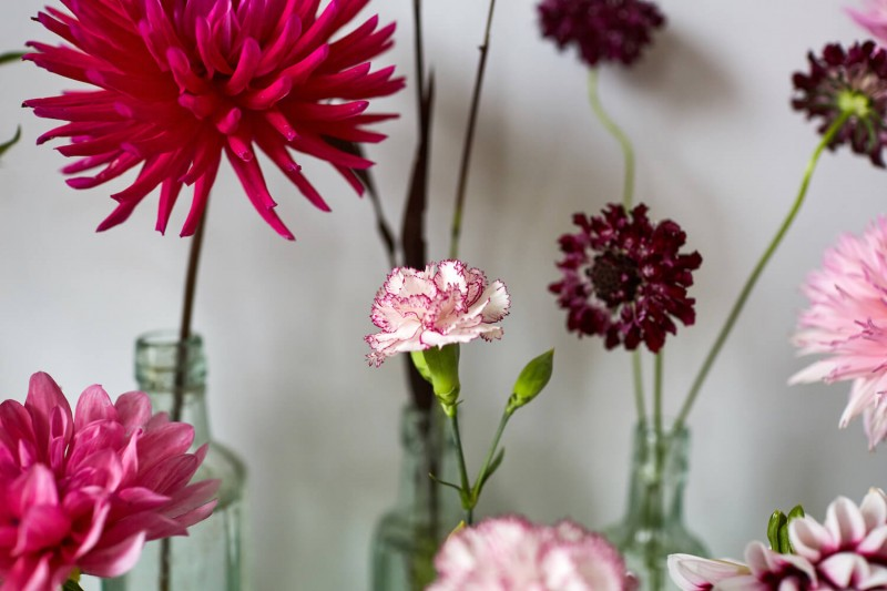 flowers-by-wetherly-wedding-british-locally-grown-september-2-9