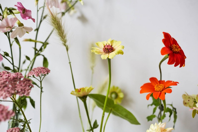 flowers-by-wetherly-wedding-british-locally-grown-september-4-3