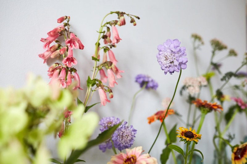 flowers-by-wetherly-wedding-british-locally-grown-september-4-5
