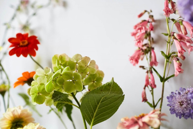 flowers-by-wetherly-wedding-british-locally-grown-september-4-9